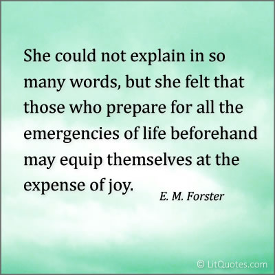 Expense of Joy Quote